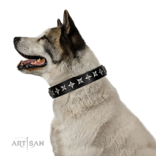 Basic training adorned dog collar of top notch natural leather