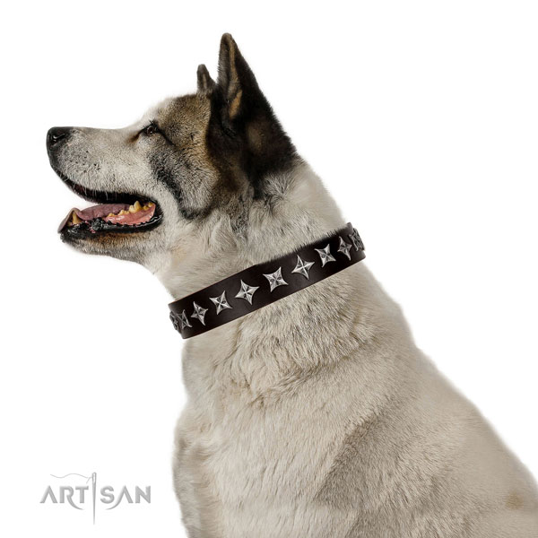 Handy use adorned dog collar of high quality genuine leather