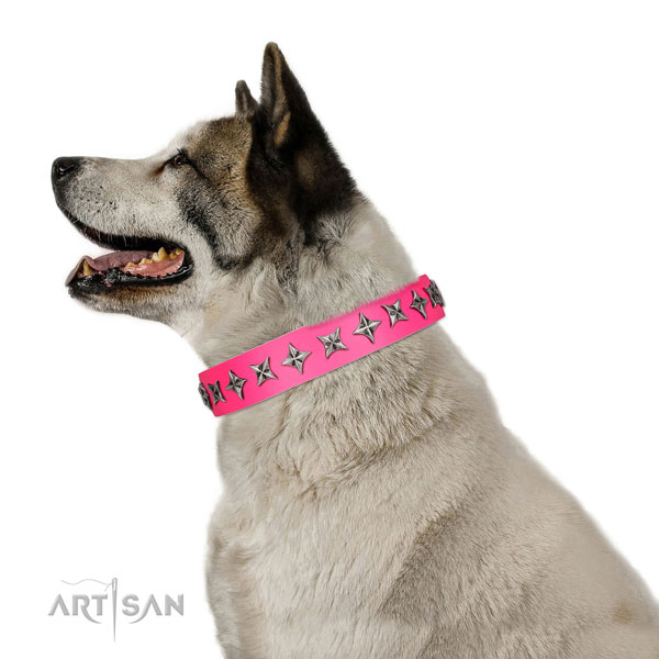 Top quality full grain leather dog collar with amazing embellishments