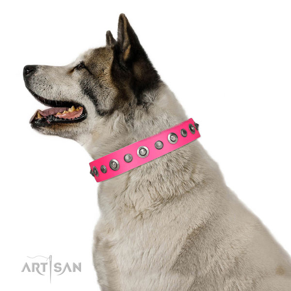 Genuine leather collar with reliable traditional buckle for your beautiful pet