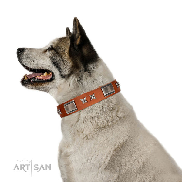 Walking soft to touch leather dog collar with embellishments