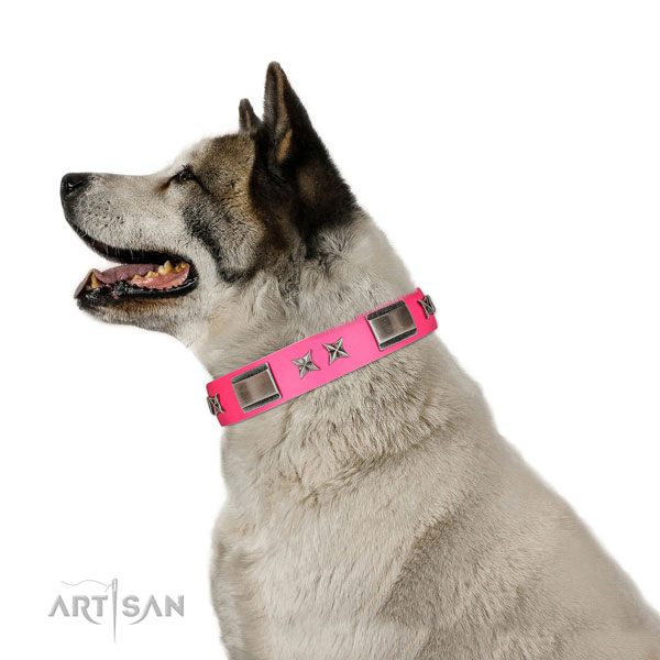 Stylish design collar of full grain leather for your four-legged friend