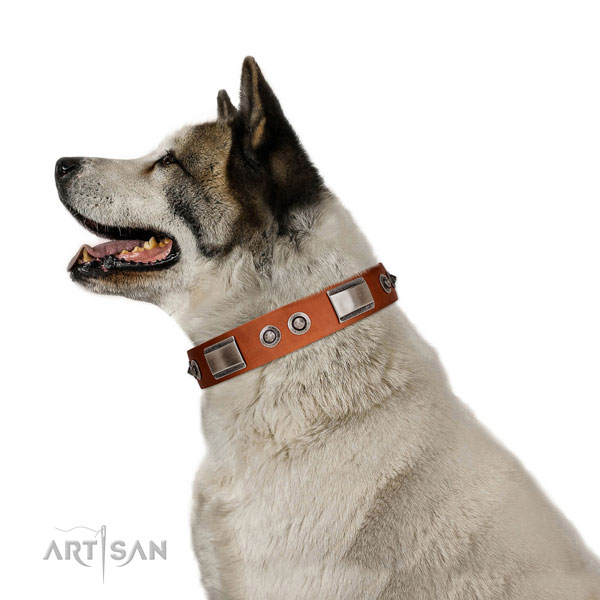Easy adjustable natural leather collar with studs for your pet