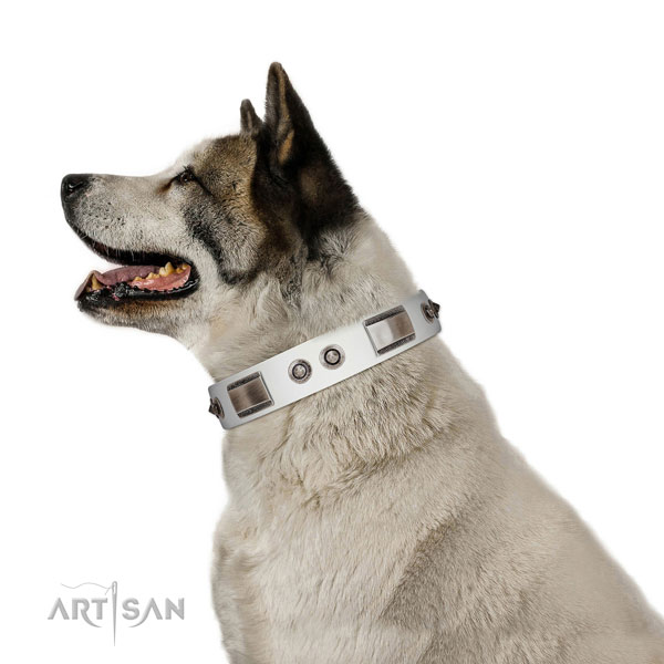 Easy wearing leather dog collar with embellishments