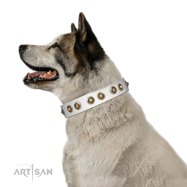 Easy wearing dog collar of leather with significant adornments