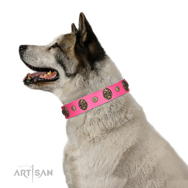 Durable hardware on full grain genuine leather dog collar for everyday walking