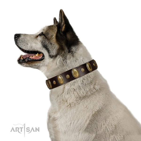 Genuine leather dog collar of soft material with significant adornments
