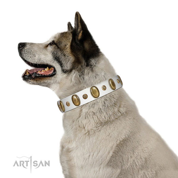 Adorned full grain leather dog collar with rust-proof D-ring