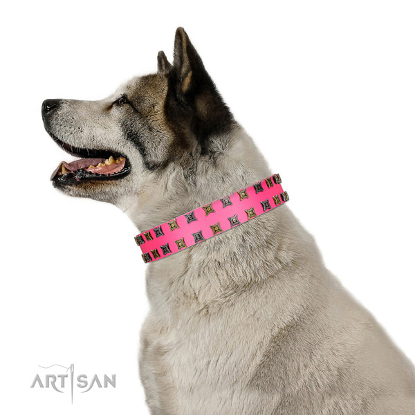 Top notch natural leather dog collar with adornments for your pet