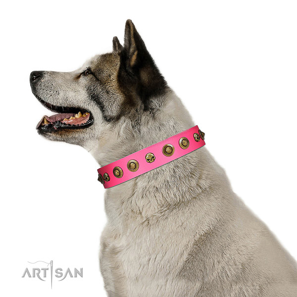 Stylish leather dog collar with decorations