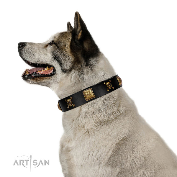 Gentle to touch natural leather dog collar with awesome studs