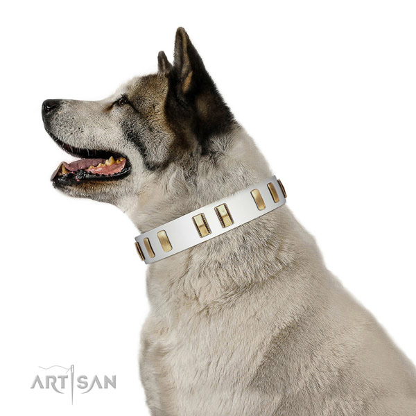 Genuine leather dog collar with impressive embellishments for everyday use