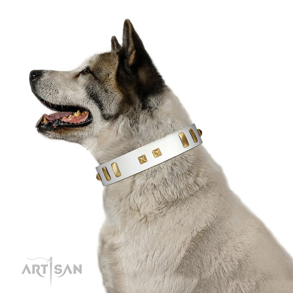 Stylish adorned leather dog collar of best quality material