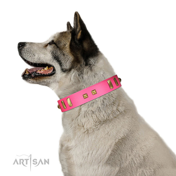 Extraordinary adorned full grain natural leather dog collar of soft material