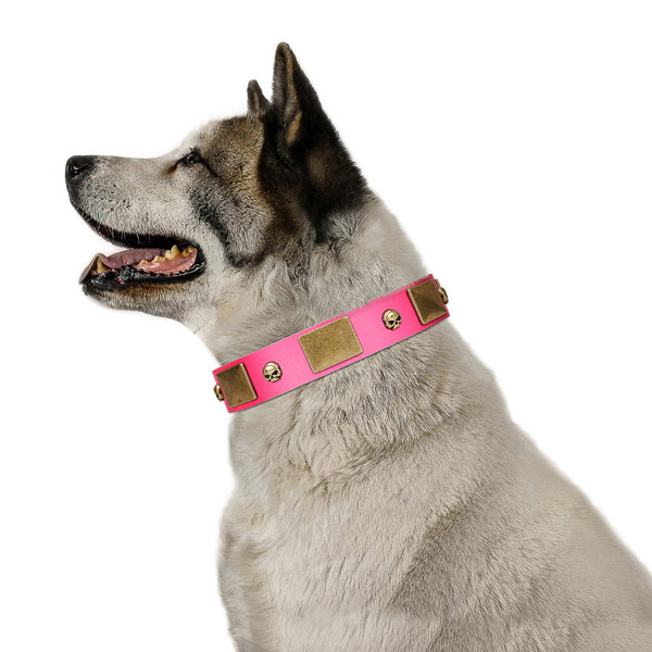 Strong genuine leather collar with corrosion resistant studs for your pet