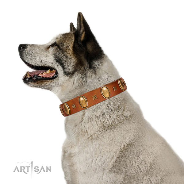 Designer adorned full grain leather dog collar of gentle to touch material