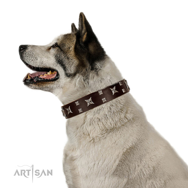 Rust-proof decorations on durable natural leather dog collar