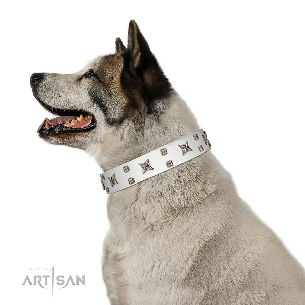 Gentle to touch leather dog collar with remarkable studs
