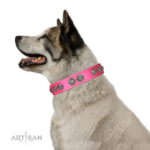 Leather dog collar of top notch material with extraordinary studs