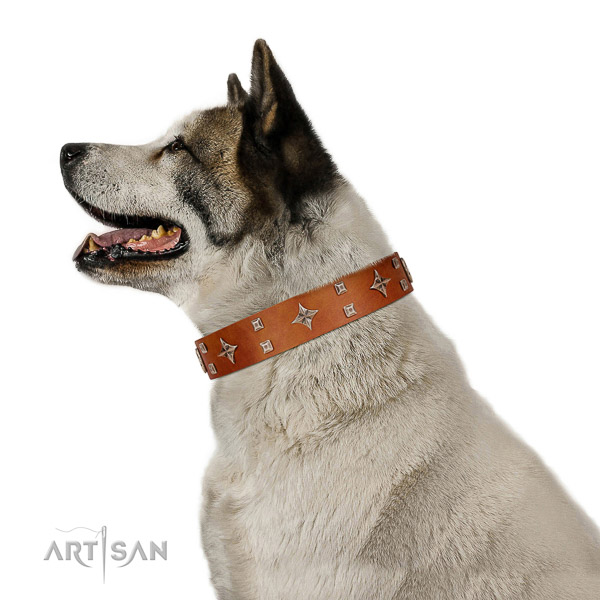 Full grain leather dog collar of soft to touch material with awesome embellishments