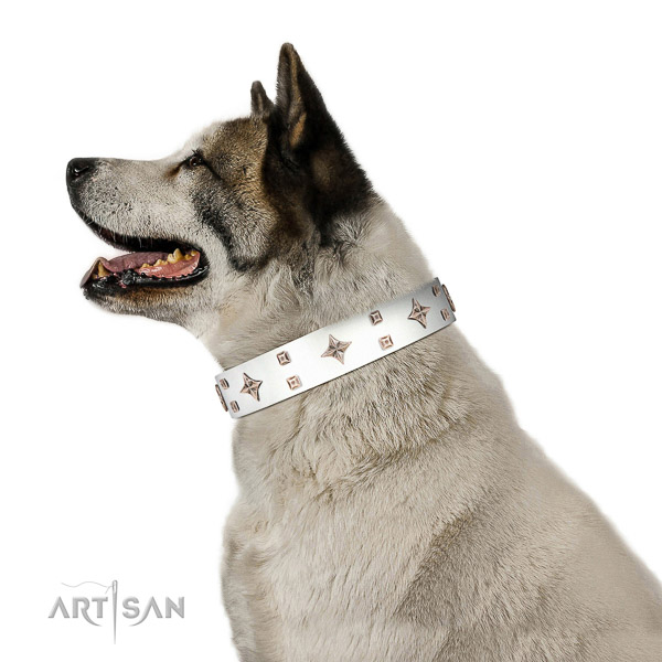Full grain natural leather dog collar of reliable material with remarkable decorations