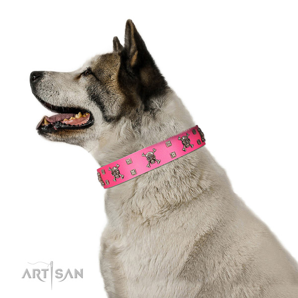 Leather dog collar with non-rusting fittings for reliable dog managing