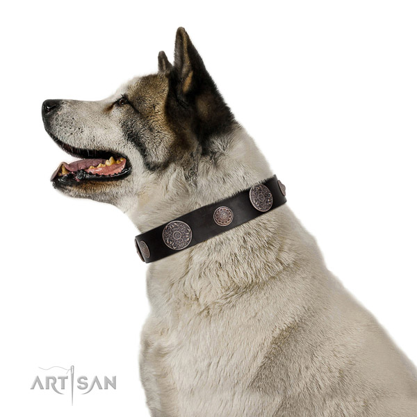 Leather dog collar with non-corrosive details for reliable pet managing