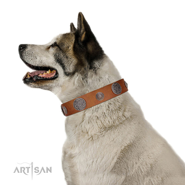 Leather dog collar with non-rusting hardware for reliable pet control