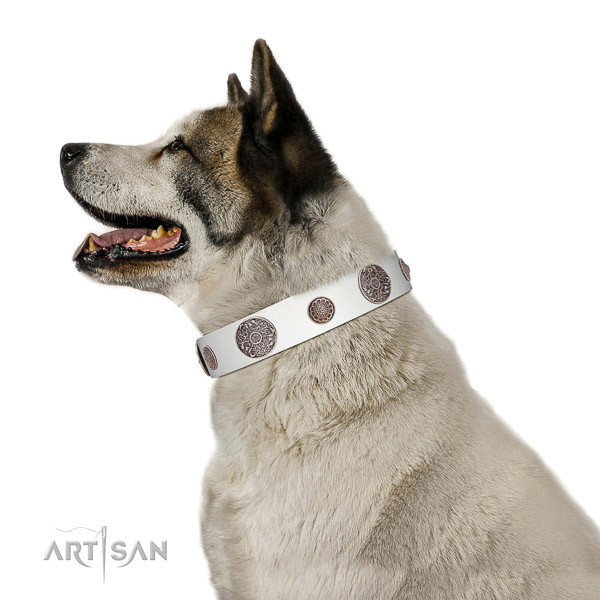 Corrosion resistant decorations on genuine leather dog collar