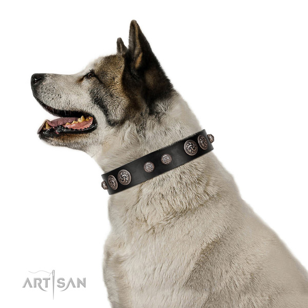 Everyday walking gentle to touch full grain leather dog collar with decorations