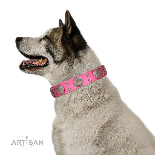 High quality full grain natural leather dog collar with rust resistant fittings