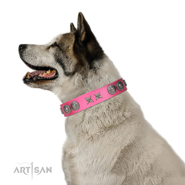 Leather dog collar of flexible material with stylish embellishments