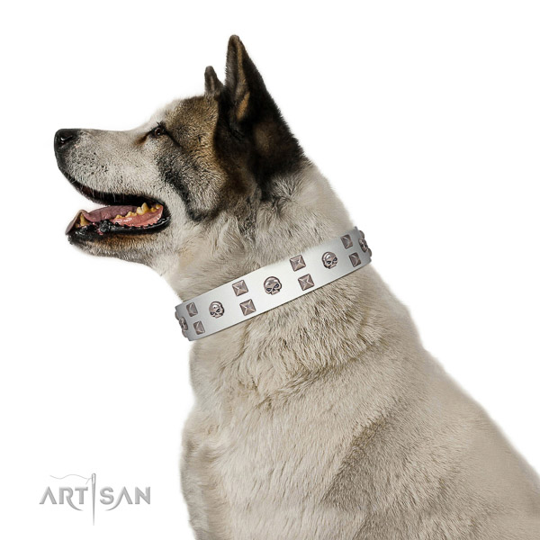 Stylish walking top notch full grain natural leather dog collar with adornments