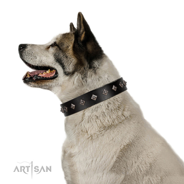 Leather dog collar with trendy adornments handmade canine