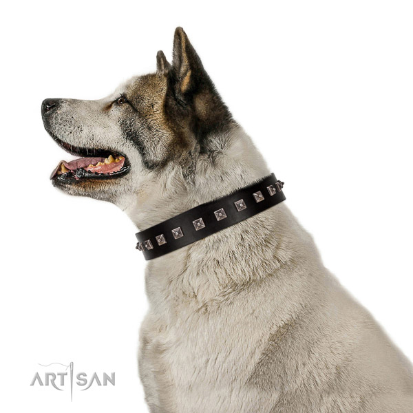 Awesome embellished natural leather dog collar