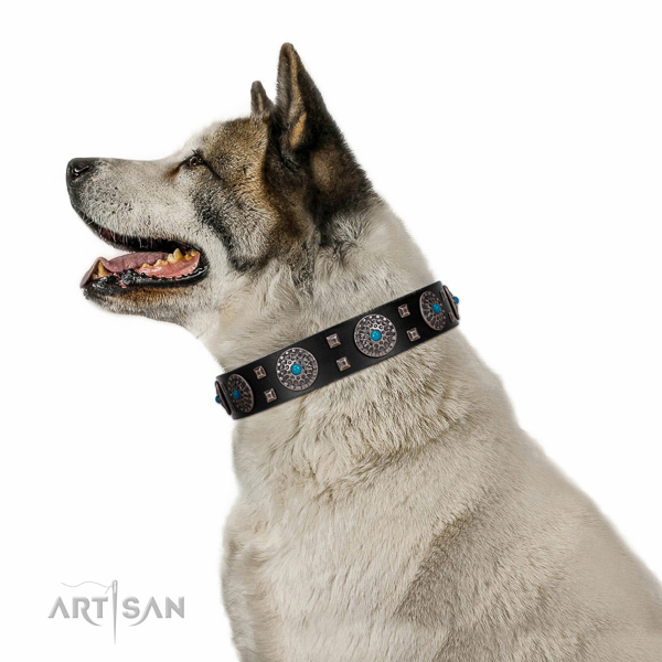 Handy use natural leather dog collar with unusual studs