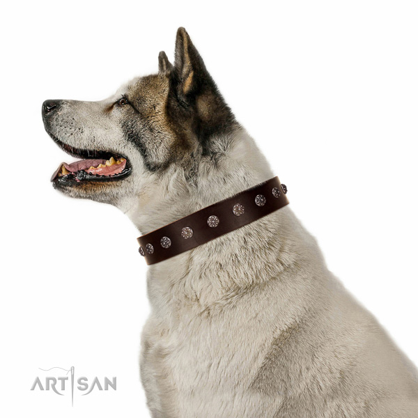 Reliable genuine leather dog collar with decorations for your pet