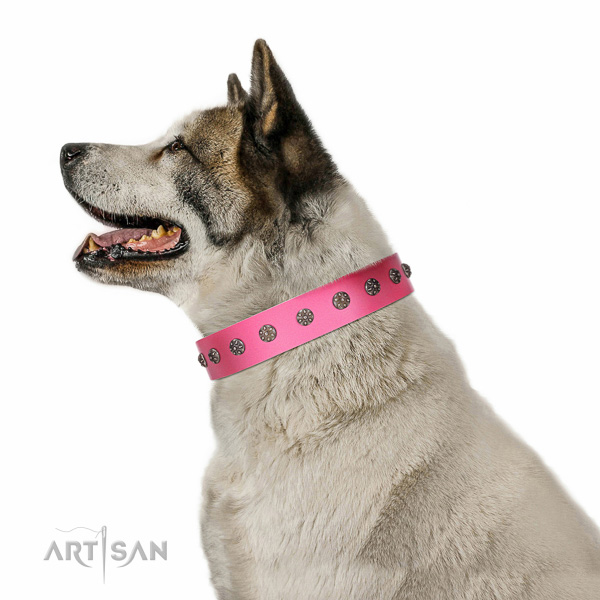 Soft full grain leather dog collar with adornments for comfy wearing