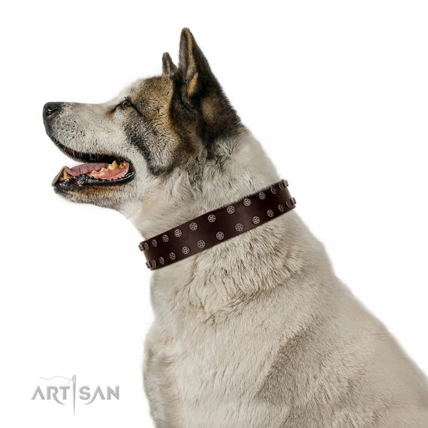 Studded natural leather collar for easy wearing your pet
