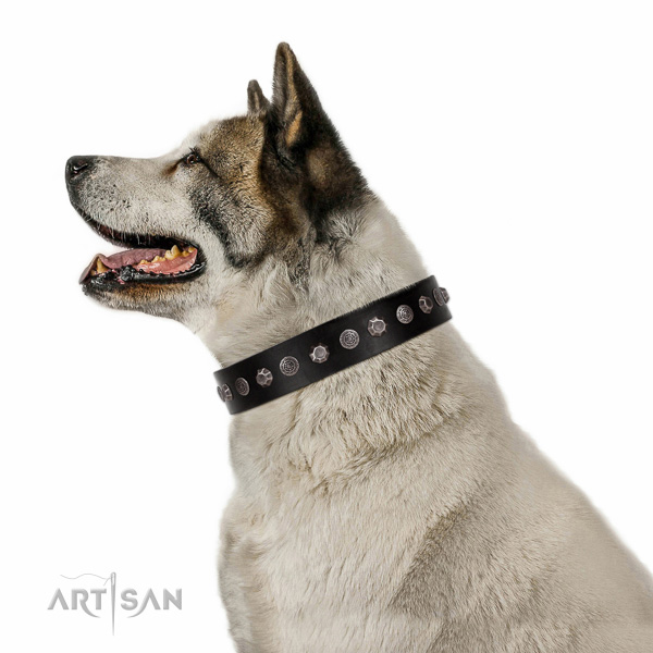 Decorated full grain leather collar for handy use your doggie