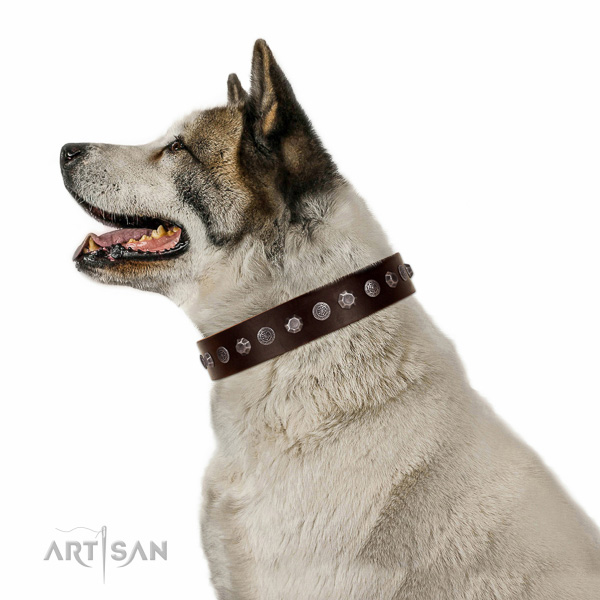 Embellished genuine leather collar for handy use your canine