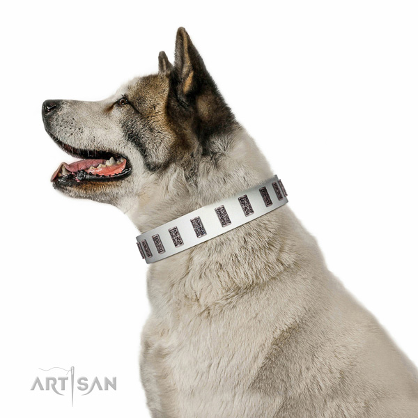 Reliable hardware on genuine leather dog collar for walking your pet