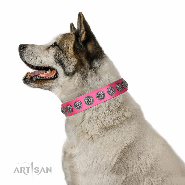 Stylish walking quality full grain natural leather dog collar with studs