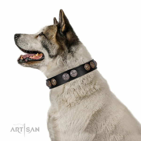 Corrosion resistant fittings on easy to adjust genuine leather dog collar