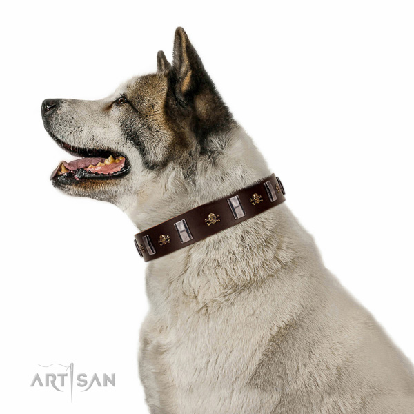 Reliable genuine leather dog collar created for your dog