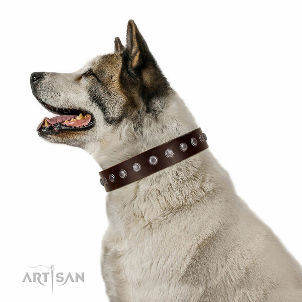 Soft to touch genuine leather dog collar with studs for comfy wearing