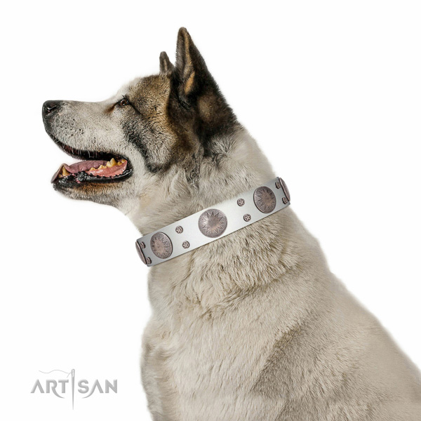 Gentle to touch full grain genuine leather dog collar with awesome adornments