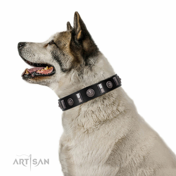 Top rate full grain natural leather dog collar with remarkable adornments