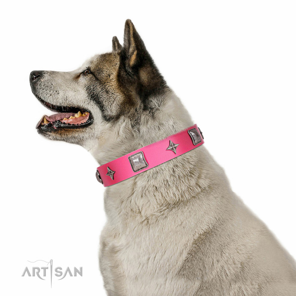 Unique decorations on full grain leather dog collar