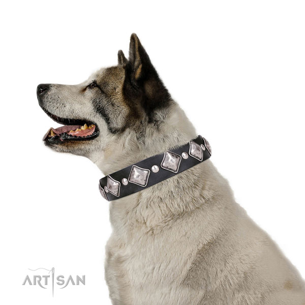 Akita-Inu adorned full grain genuine leather dog collar with decorations